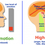 How to calm the Amygdala Hijack naturally?