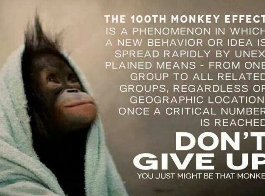 100th monkey phenomenon