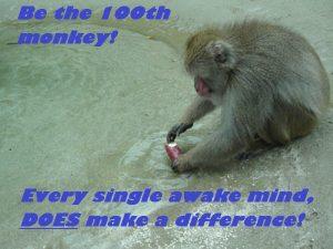 Tool as 1ooth monkey