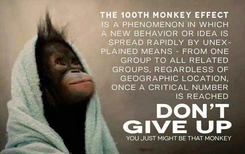 100th monkey phenomenon