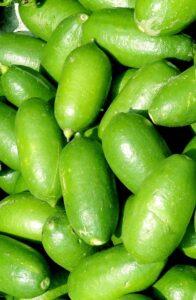 Assam Lemon