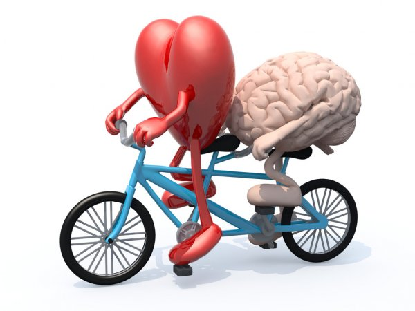 Heart brain intelligence