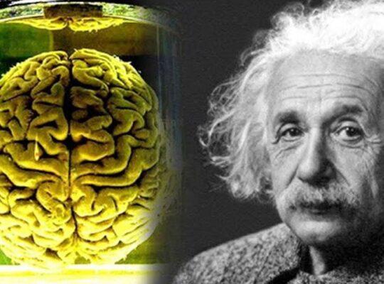 Albert Einstein brain revealation